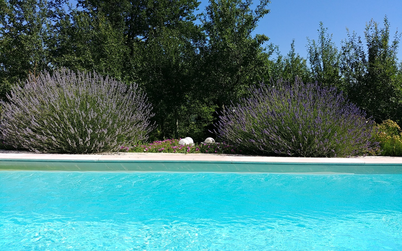 Stancija Scodanella, Ferienhaus mit Pool in Motovun, Istrien, Kroatien