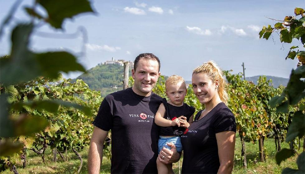 In den Weinbergen von Motovun, Istrien, Kroatien